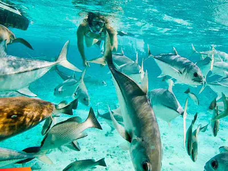 Ambergris Caye, Belize02