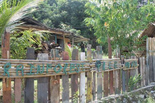雨林树屋 RAINFOREST TREE HOUSE